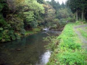 岩屋川 中流域