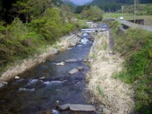女神川 上流部